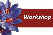 Saffron Meetings and Workshops